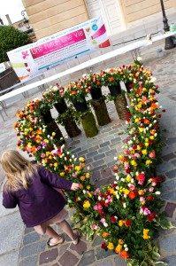une fleur, une vie 4 mai 2013