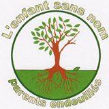logo_esn