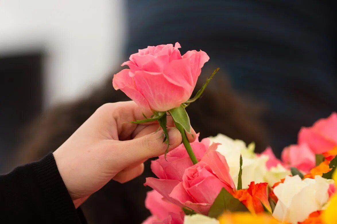 Une Fleur, Une Vie 2021