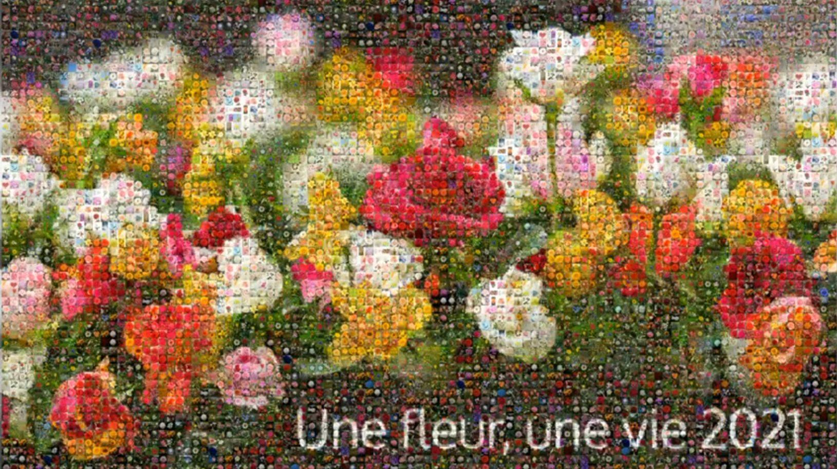 Une fleur, une vie, 9e édition, encore en distanciel